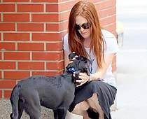 Julianne Moore real street upskirts