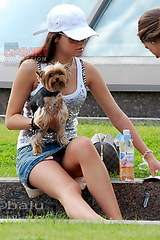 2183 Girl with doggy sexy upskirt