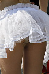 2893-naughty-cowgirls-up-skirt-ass
